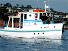 Fish n Trips Port Philip Bay charter tours