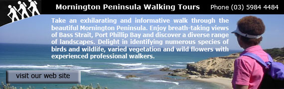Dunballs Walking Tours Mornington Peninsula